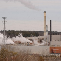 Environmental group's report comes under fire after citing Bucksport mill as one of dozens of 'dirty' biomass plants