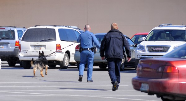 Police search a mall parking lot as they investigate a robbery that happened at the Maine Savings Federal Credit Union on Broadway in Bangor Thursday.