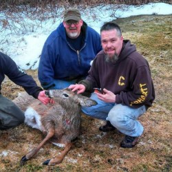 Dover-Foxcroft firefighters rescue two deer that fell through ice