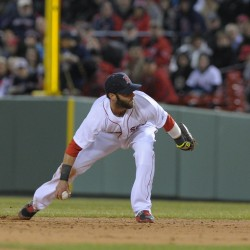 Boston's Pedroia has bone bruise on right kneecap