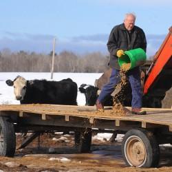 New federal rules may cut long-standing ties between beer makers, farmers