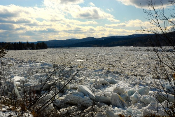 An ice jam formed on the St. John River between St. Francis and St. John Plantation late Wednesday and remained in place Thursday morning.