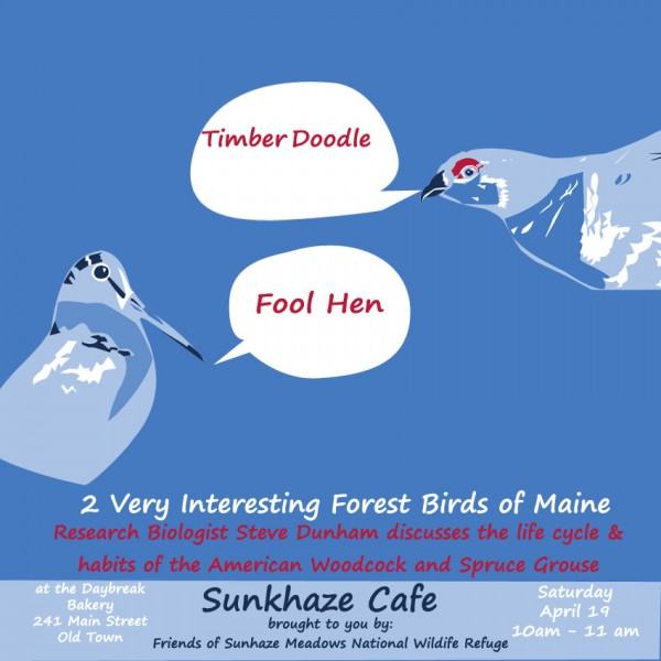 Sunkhaze Meadows presents Foolhens and Timberdoodles: 2 Interesting  Forest Birds of Maine