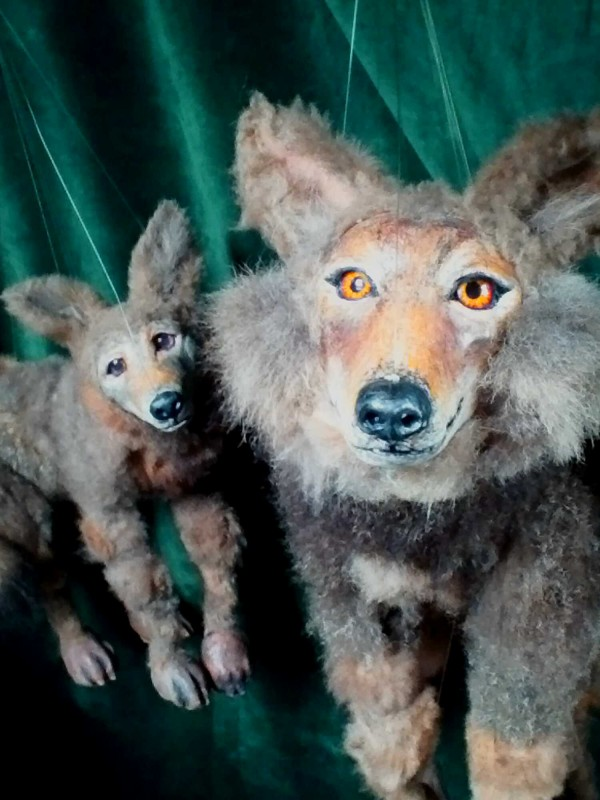 A close up of Coyote Mom and her Pup, marionette puppets created by Maine artist Melissa Glendinning.