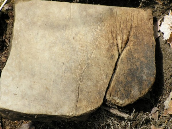 One of many gravestone fragments, discovered in May 2013, at the abandoned, ancient cemetery in Trenton. Note the faded inscription.