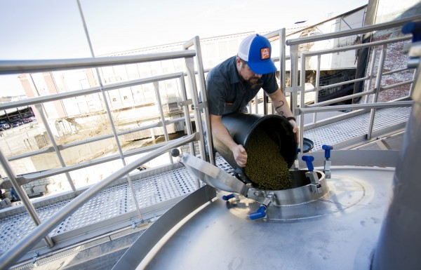 Jon Green adds 60 pounds of hops to a fermenter containing Stowaway I.P.A. at Baxter Brewing Co. Stowaway I.P.A. requires five different hop additions — one addition may be up to 500 pounds if a full batch is being brewed.