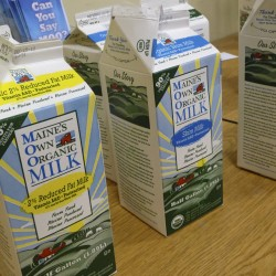 Wisconsin co-op adds six former MOO Milk farmers, launches 'Aroostook Initiative'