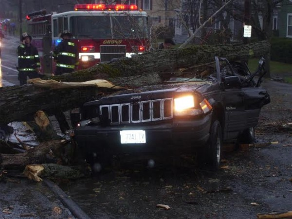 A tree branch fell on a Jeep in Orono on May 4. Isis Bell-Smith, Ryan Laracy and their toddler son, Felix, were injured in the accident.