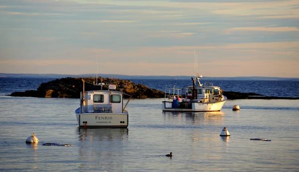 Monhegan Harbor during sunrise.