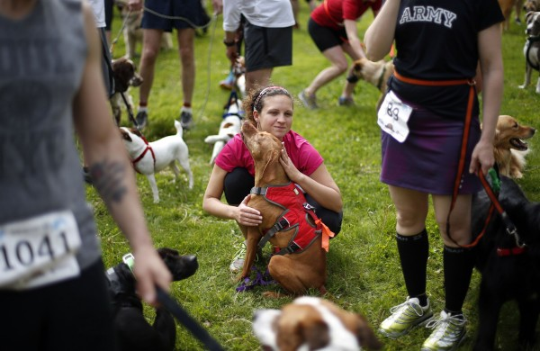 A competitor comforts her dog prior to the start of the race.