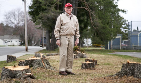 Ted Vail, a member of Falmouth's Veterans Memorial Committee, stands amid a dozen tree stumps at 65 Depot Road, where organizers plan to erect an 8-foot black granite monument honoring the town's military veterans.