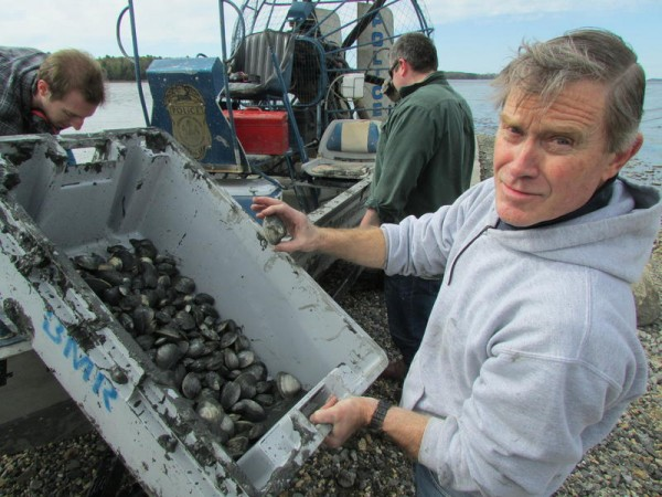 Chris Heinig with some of the nearly 400 quahogs collected in Maquoit Bay on Monday.