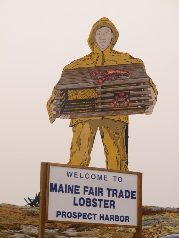 A new sign with the name of the new owner of a longtime seafood processing plant in Gouldsboro sits in front of the plant's iconic, 40-foot tall fisherman. Maine Fair Trade Lobster officials say they plan to boost the number of employees at the plant by 50 percent this year for a total of nearly 200.