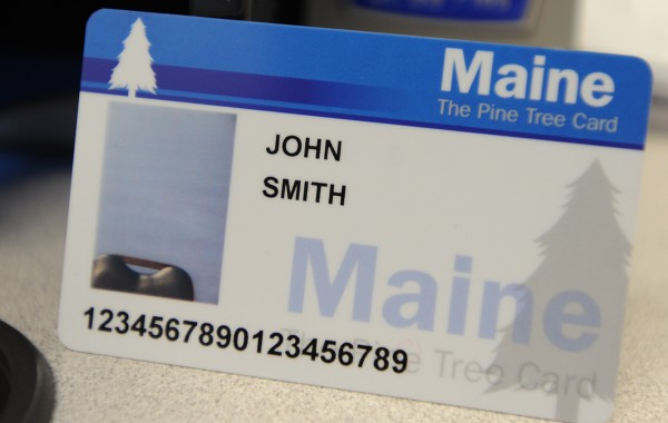 This is a sample photo EBT card.
