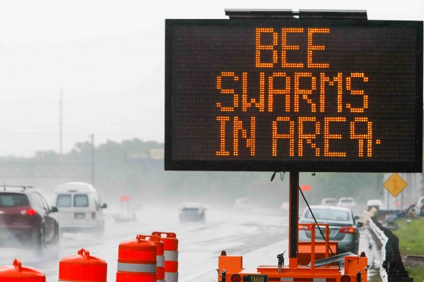 Traffic along I-95 are met with a warning sign from Delaware Department of Transportation to keep their car windows closed due to swarming bees near Newark, Delaware, on Wednesday.