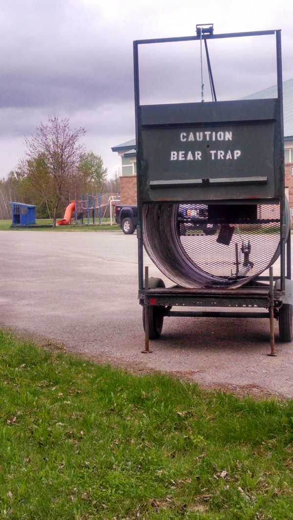 State wildlife officials have set a trap behind the Princeton Elementary School to try to capture a nuisance bear spotted there this week.