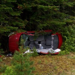 Moose crash derails Van Buren ambulance run; no one hurt