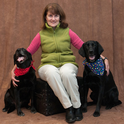 Anna Perna with her black Labradors Thule and Blu; Thule is Blu's mother.