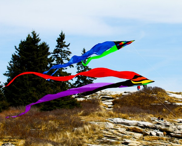 Kites flying at Reid State Park.
