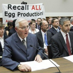 Iowa-approved egg farm tied to Maine's DeCoster