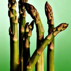A taste for asparagus