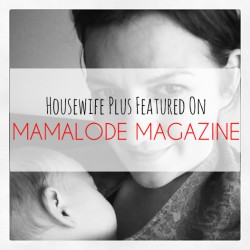 Housewife Plus gets popular on mom blogs