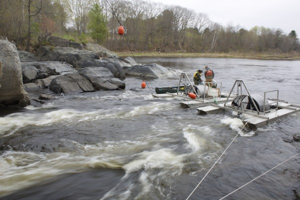 From left, Derik Lee and Andrew Gibbs, both field techs with the Maine Department of Marine Resources, empty an Atlantic salmon smolt trap Thursday afternoon on the Piscataquis River to tag and then release the fish.
