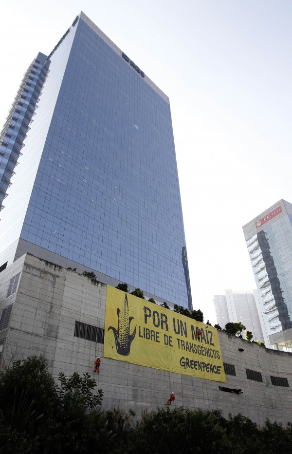 Greenpeace activists display a banner during a demonstration at the Monsanto company offices in Mexico City on October 16, 2012.