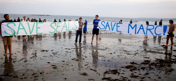Banners urging the University of New England to reconsider closing the Marine Animal Rehabilitation Center were unfurled on the beach in Biddeford Tuesday night after the center's final five seals were released back into the ocean.
