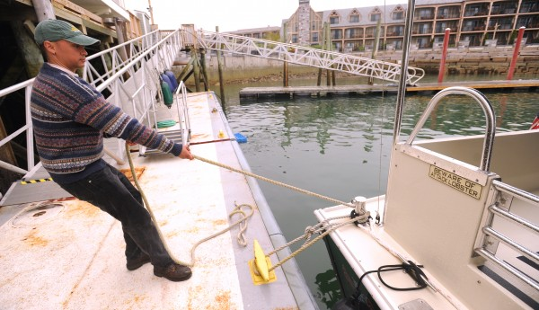 Mwaura Ngoima, a crew member of the Lulu, holds onto the dockline before the lobster fishing and seal watching tour boat leaves the dock Thursday in Bar Harbor.