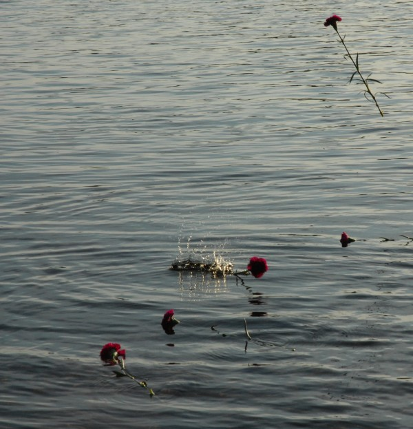 Purple carnations were placed in the St. John River in memory of Amy Theriault, killed last week in her St. Francis home, allegedly by her longtime boyfriend.