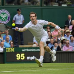 Djokovic overcomes Stepanek, joins Murray, Williams in 3rd round at Wimbledon