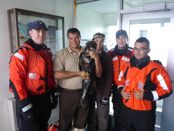 Maine Coastal Islands National Wildlife refuge Staff Linda Welch and James Fortier, and USCG Station Jonesport Boat Crew Craig Deats-Cascio, Andrew Carlson, and Sean Haley rescued a distressed eagle on Eastern Brothers Island, Jonesport.