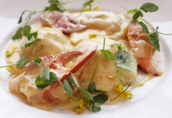 Aragosta's signature dish, Stonington lobster ravioli, made up of butter-poached house made pasta, citrus beurre blanc, lemon confit, and farm greens is seen at Aragosta recently in Stonington.