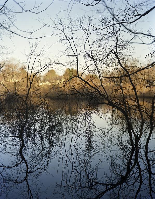 The Assabet River near Barbara Bosworth's studio.