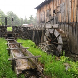 Maine Forest and Logging Museum welcomes new executive director