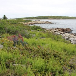 "Outside Magazine names Maine Island Trail ""Best Sea-Kayaking Trail"" in America"