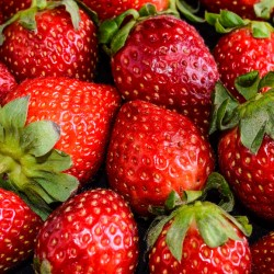Strawberries: Good for the head, the heart and the taste buds