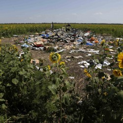 MH17: Who did it? What next?