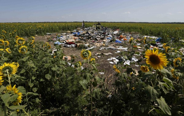 Wreckage and debris at the crash site of Malaysia Airlines Flight MH17 is pictured near the village of Hrabove (Grabovo), Donetsk region on Saturday.