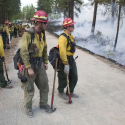 Colo. firefighters make progress on large wildfire