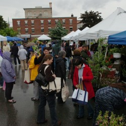 Farmers markets across Maine