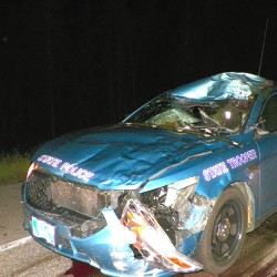 Ambulance hits moose in County, driver, passengers unhurt