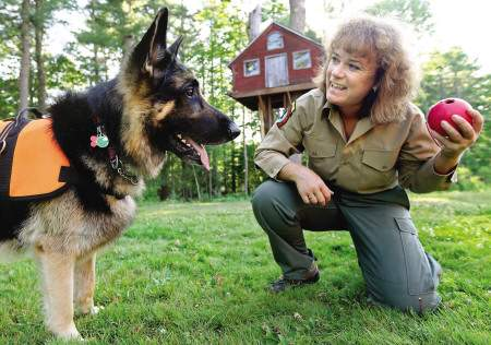 lizabeth Fossett plays fetch with her search and rescue dog Kobuk at her home in York, Maine, on Wednesday afternoon after the 5-year-old German shepherd discovered a South Portland woman who had been missing since Monday.