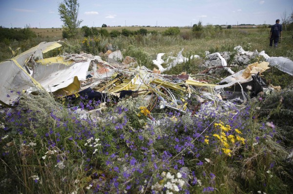 A part of the wreckage of Malaysia Airlines Flight MH17 is pictured at its crash site, near the village of Hrabove, Donetsk region.