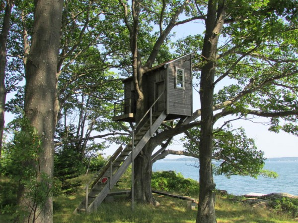 Pictured is a tree house on the northeast side of Clapboard Island.