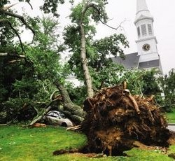 Cost of 2014 microburst less than half the cost of 2010 microburst, York manager says