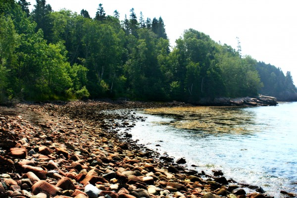 A recent photo of the rockbound coast of Acadia National Park. Some visitors are taking part of that coast back home stone-by-stone, a practice that is not only harming the park but is illegal.
