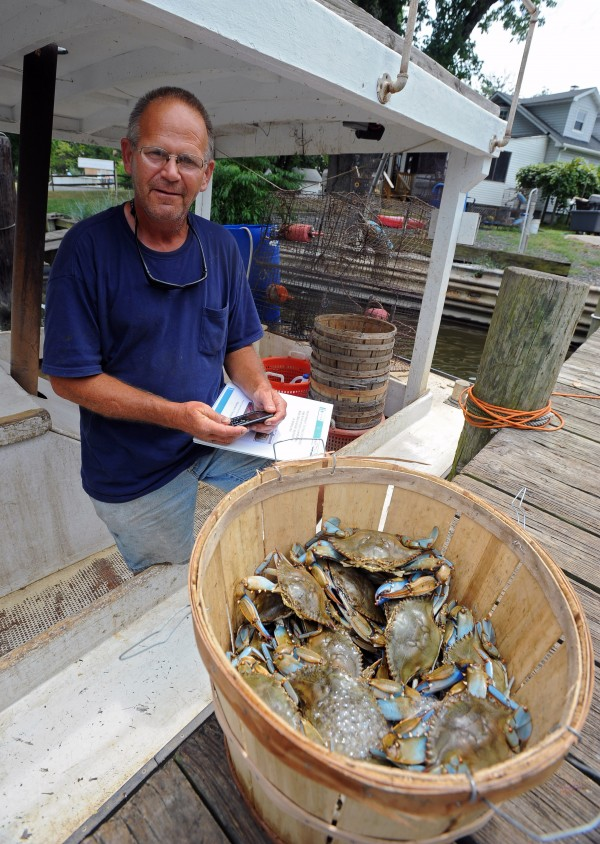 Licensed crabber Richard Young stands beside a half bushel of crabs in Dundlak, Maryland, in this July 2012 file photo.