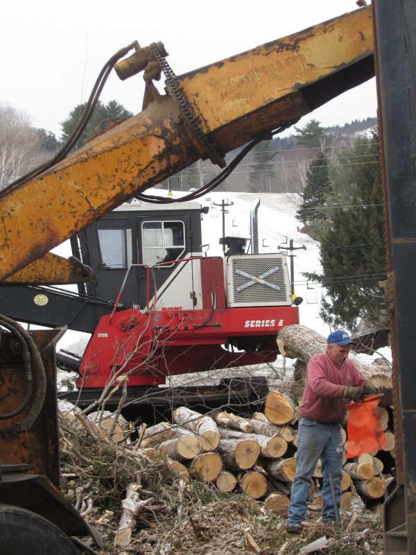 Tree cuts from Ragged Mountain in Camden are being sent to paper mills and lumber yards for use.